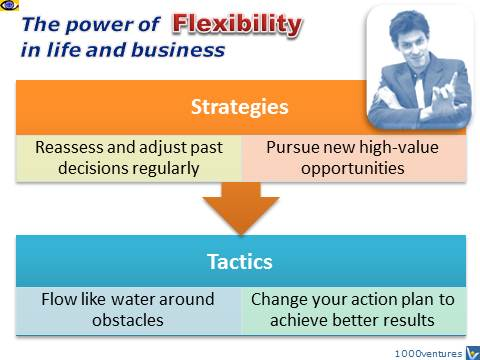 FLEXIBILITY - the power of flexibility in life and business, way to success, Dennis Kotelnikov