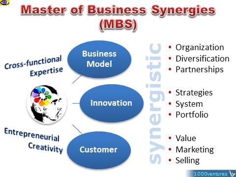 Master of Business Synergies (MBS): business model, innovation, customer, Vadim Kotelnikov